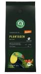 Plantagen Kaffee, Bohne