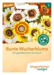 VB-Wucherblumen, einjährig   A