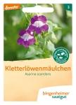 Blumen Kletterlöwenmäulch. W-A