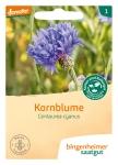 Blumen Kornblume           G-A