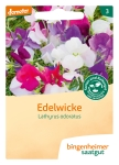 Blumen Edelwicke             A
